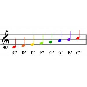 律音管 中音